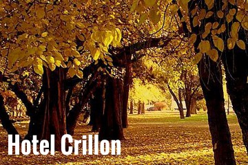 crillon-vejpg