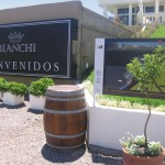 San Rafael and General Alvear wineries