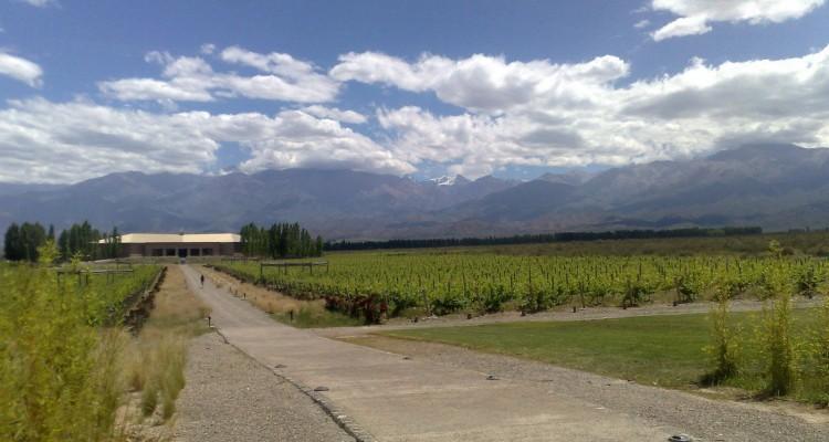 Excursiones en el Valle de Uco: Bodega Salentein