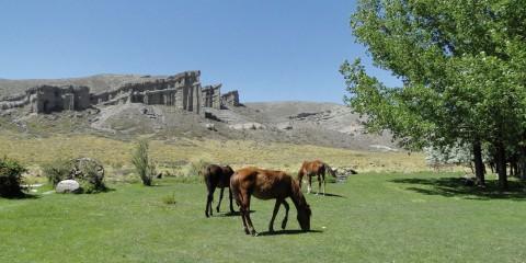 Excursiones desde Malargüe: Castillos de Pincheira