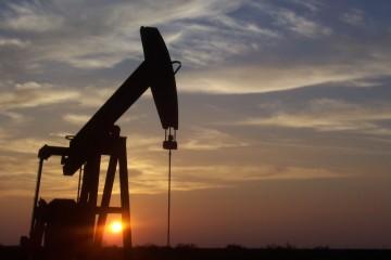 Perfil económico de Mendoza: el petróleo