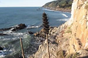 Paisajes costeros de la región central de Chile