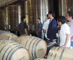 Bodegas en Maipú: Visita bodega Zuccardi