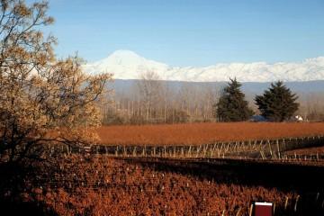 Otoño en Mendoza, el clima ideal