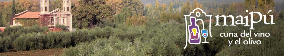 Maipú cuna del vino y el olivo