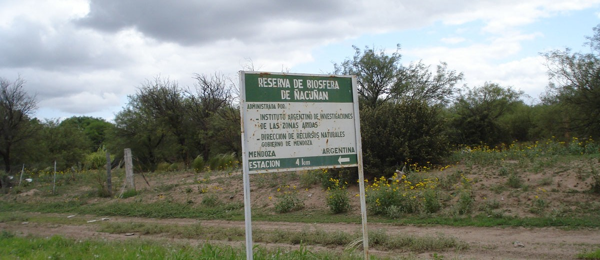 Reserva de Ñacuñán
