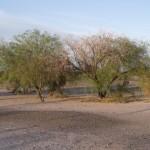 Reserva Bosques Teltecas