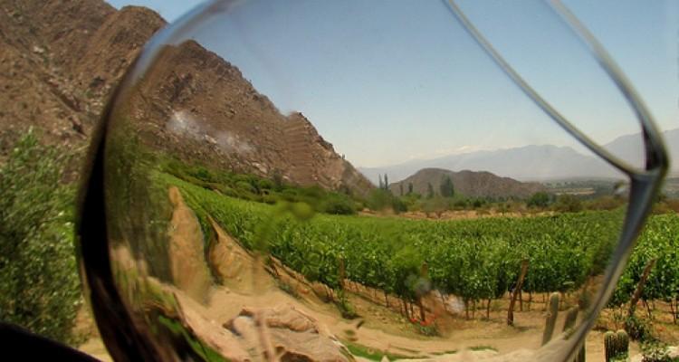 Diplomatura Experto en Turismo del Vino
