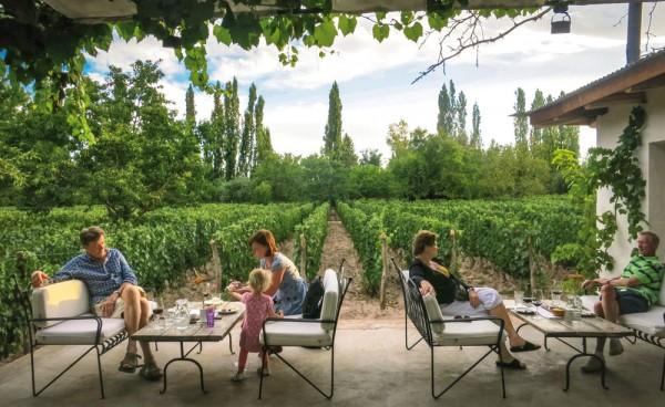 Mendoza capital del vino