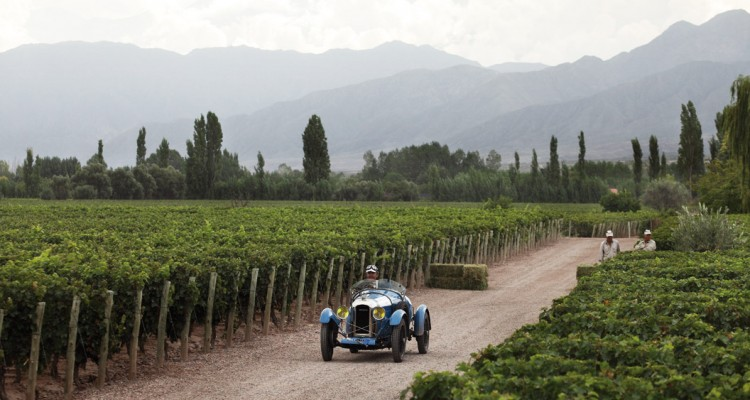 Vendimia - Rally de bodegas