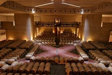 Caminos del vino en Valle de Uco