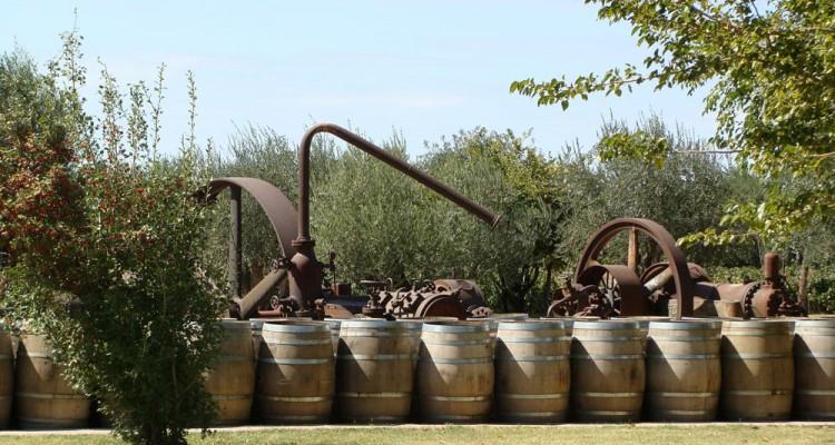 Los caminos del vino