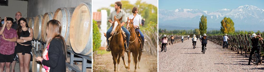 Tour de Vino en Mendoza