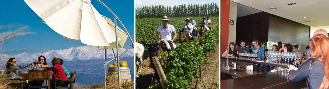 Tours de Bodega en Mendoza