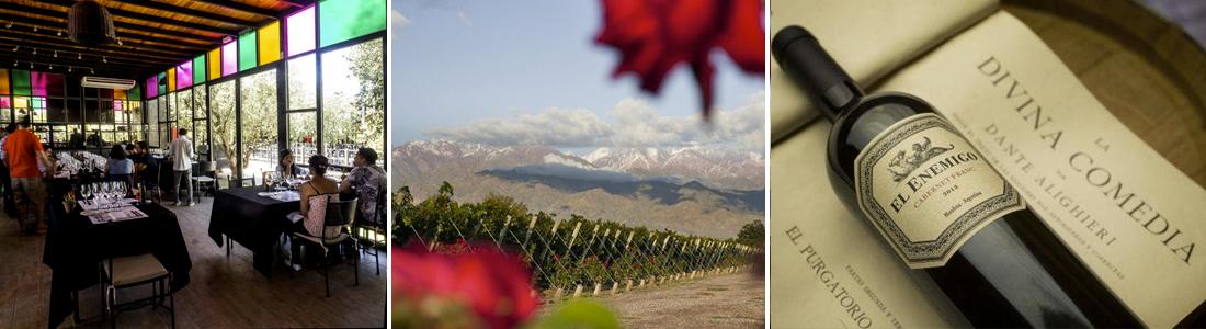 Vino Argentino, Bodegas de Mendoza