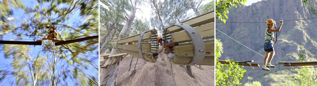 Parque de árboles Euca en San Rafael