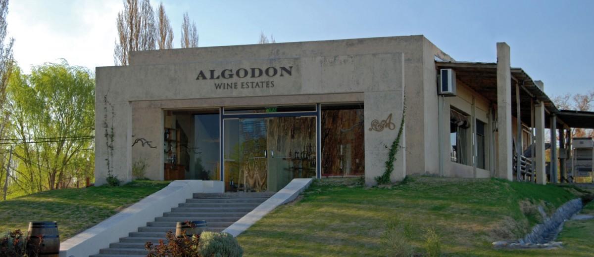 Caminos del Vino en San Rafael: Bodega Algodon