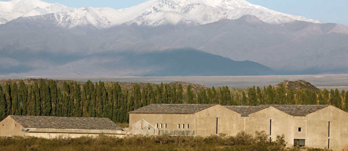 Caminos del Vino en el Valle de Uco: Bodega Atamisque
