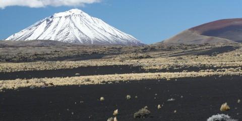 Las tierras volcánicas de la Payunia