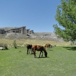 Los Castillos de Pincheira