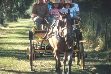 San Carlos: Turismo rural