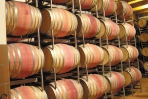 Oasis Vitivinícolas: Haciendo vino