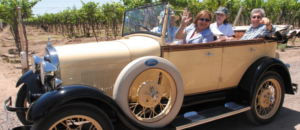 Paseo en autos antiguos por los viñeedos