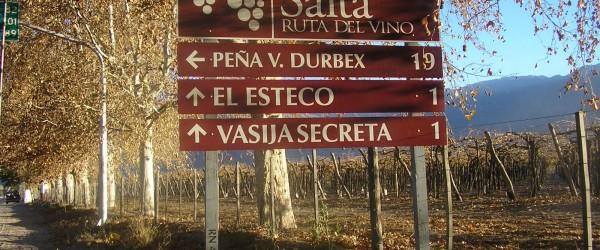 Caminos del vino en Argentina: Salta