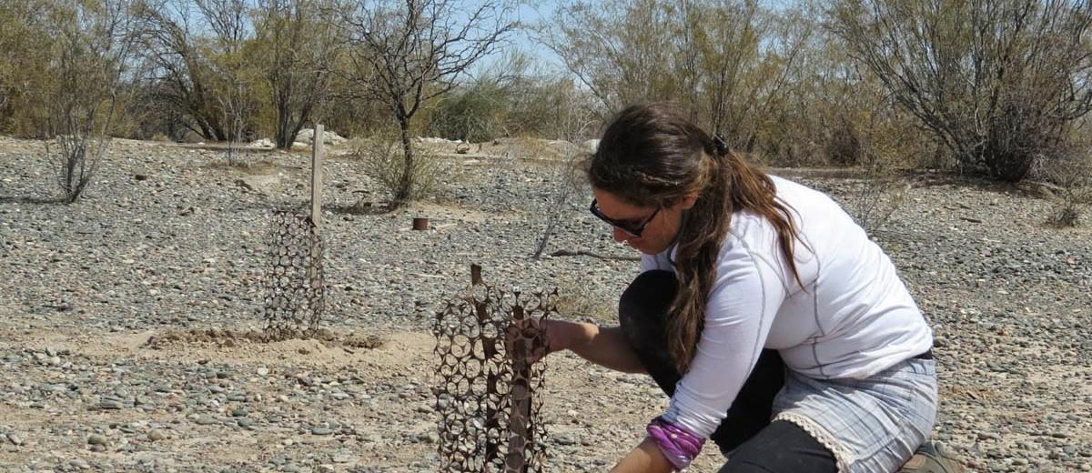 Replantando en Reserva Bosque Teltecas