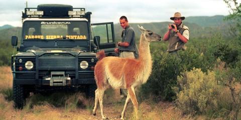 Avistaje de fauna en San Rafael