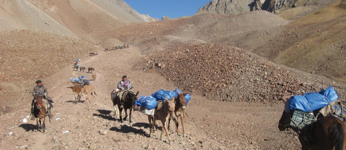 Cabalgata sanmartiniana a lomo de mula