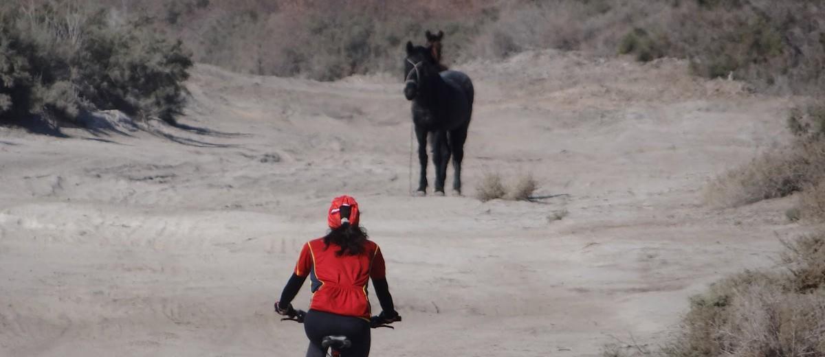 En bici por el desierto de Lavalle