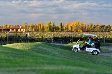Bodegas Algodon Wine Estate