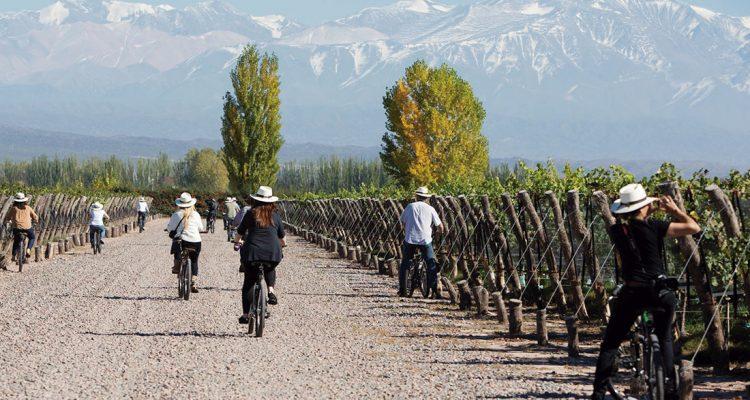 En bici por los viñedos de Mendoza